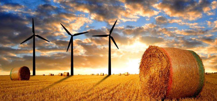 Fonti rinnovabili, accordo Ue: nuovi obiettivi in materia di energia e clima.